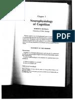 Maturana - Neurophysiology of Cognition 1970b