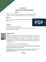 PRACTICA #4 Densidad (Bandera) (1)