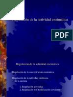 regulacion_enzimática
