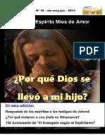 REVISTA ESPIRITA Nº 16 ¿PORQUE DIOS SE LLEVO A MI HIJO?