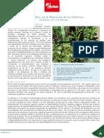 Fertilab El Zinc en la nutricion de los cultivos.pdf