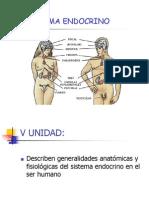 11-sistemaendocrino-1