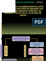 INFORME_CUYES_PPT