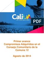 CONSOLIDADO C12 (1)