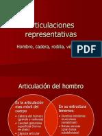 5 Articulaciones representativas