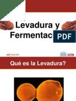 Presentacion Levadura y Fermentacion[1]
