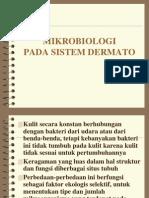 07 Sistem Dermato