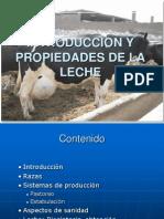 Produccion Leche Agroindustrial