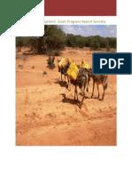 2010 Somalia Millennium Development
