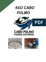 Caso Pulmo.doc