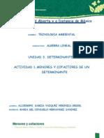 ALI-U3-MCI-VEGV.docx