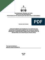 Aproveitamento Dos Resíduos Cauliníticos Das Indústrias de Beneficiamento de Caulim Da Região Amazônica Como Matéria - Prima Para Fabricação de Um Material de Construção (Pozolanas)