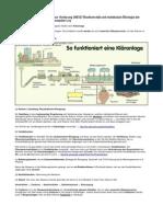 FRAGENAUSARBEITUNG Biodiversitaet Und Molekulare Oekologie Der Mikroorganismen Teil 1