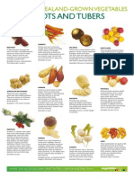 VEG0018 Roots and Tubers A3 Poster