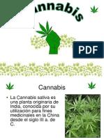 4 Marihuana