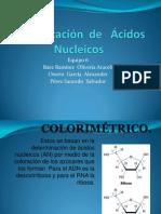 Identificación  de   Ácidos  Nucleicos eq6.pptx