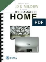 Fema Mold Brochure English