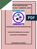 GIMA-DIRECTRIZ DE DESARROLLO