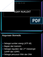 asam nukleat keperwartan