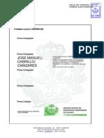 Documento Síntesis Estudio Impacto Ambiental Firmado1