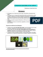 Funci__n de Los Elementos Esenciales en Los Cultivos