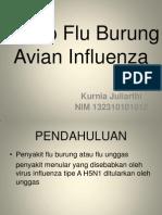 Askep Flu Burung