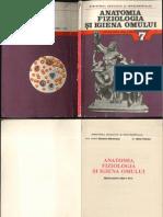 Anatomia VII 1989