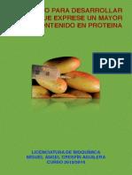 TRABAJO FINAL DE BIOTECNOLOGIA.pdf