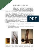 Paleopatologia 2013-03-26 1