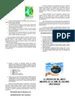 CHARLA 02 La Proteccion Del Medio Ambiente