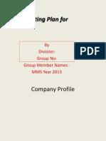 Marketing Plan Template11