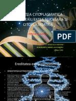 proiect genetica 121212.