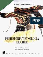 Mario Orellana Chile