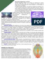 Polarización Energetica O-kuni