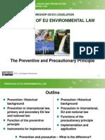 9 Preventive and Precautionary Principles_revised