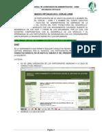 AEE- DV. F  docx