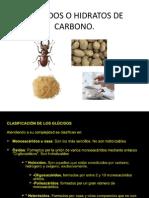 GLÚCIDOS O HIDRATOS DE CARBONO.pptx