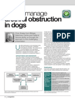 How-To-April-2014 Companion How to Manage Urethral in Dogs Urethral Obstruction
