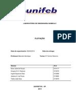 Relatorio flotação (1).docx