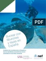 Bucear Con Tiburones y Rayas en Espana (1)