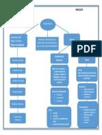 Marco Teorico Mapa Conceptual