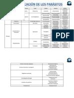 Clasificacion protozoarios.pdf