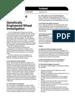 GE Wheat FAQ