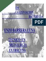 Introduccion a la Lixiviacion Bacteriana.pdf