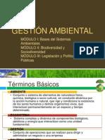 Gestión Ambiental Módulo I