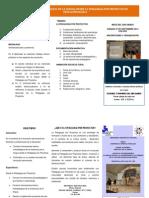 Tríptico Diplomado 2014 Pedagogía Por Proyectos