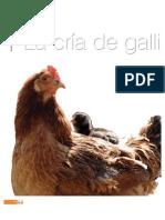 ponedoras.pdf