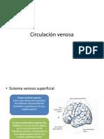 Circulación venosa