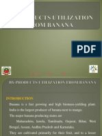 Products Utilization From Banana