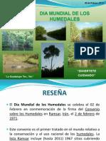 Ponencia Reseña Humedales_1